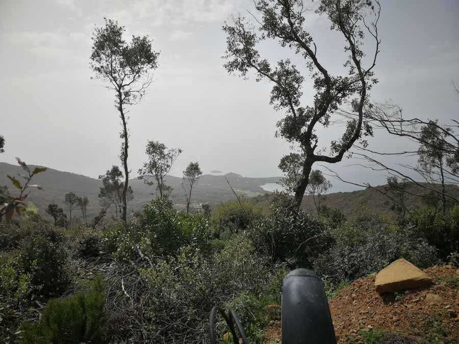 Aussicht auf Punta Ala