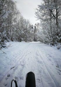 Handbike im Schnee, Singletrail