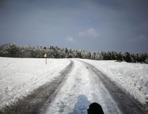 Zufahrt zum Hardwald